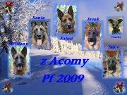 z Acomy